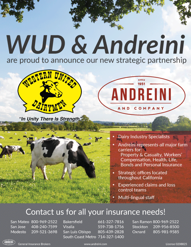 Ad-2015-WUD-PNG